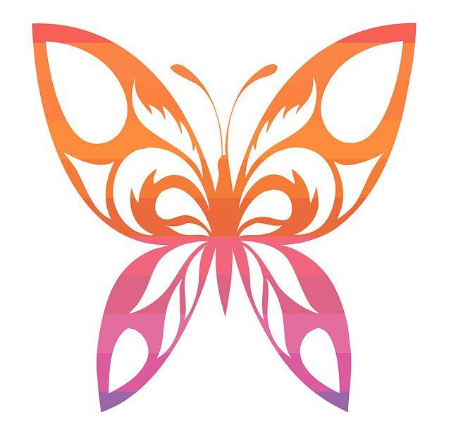 Une minute papillon