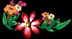 flowers-3225890_640