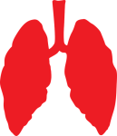 lungs-3464515_640